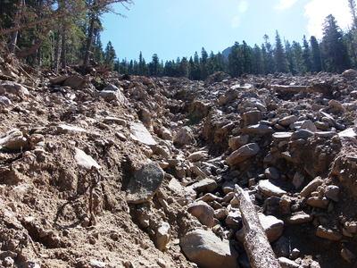 2014-08-11 Twin Sisters Landslide