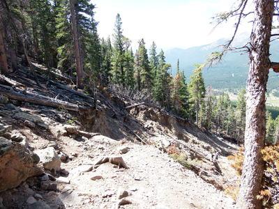 2014-08-11 Twin Sisters Landslide, initial break on trail