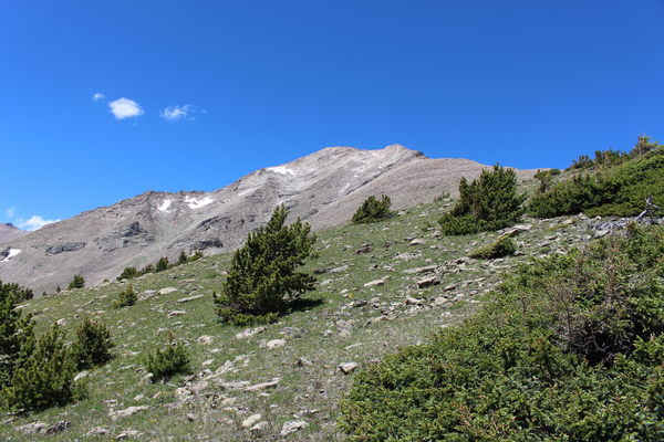 2015-07-12 Mt Meeker from Meeker Ridge