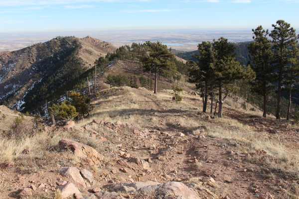 2019-12-20 View east from trail in Lefthand OHV area